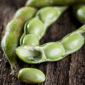 Soybeans in pods — Stock Photo