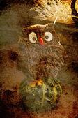 Owl cookie — Stock Photo