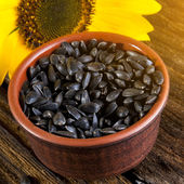 Sunflower and seeds — Stock Photo