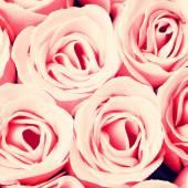 ピンクのバラの背景 — ストック写真