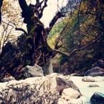 River of Pozar at Aridaia — Stock Photo #56802053