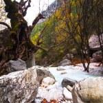 River of Pozar at Aridaia — Stock Photo #56802133