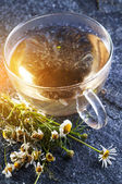 Chamomile tea and flowers — Stock Photo