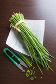 Welsh onion bunch — Stock Photo
