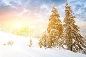 Sunny day in winter mountains — Stock Photo