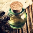 Burdock oil, dry flowers and seeds — Stock Photo #63223073
