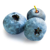 Close up of fresh blueberries — Stock Photo