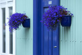 House entrance with flowers in pots — Stock Photo