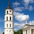 Vilnius belfry tower and Cathedral fragment — Stock Photo #68711263