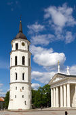 Vilnius belfry tower and Cathedral fragment — Stock Photo