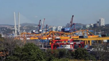 Vladivostok sea trading port — Stock Video
