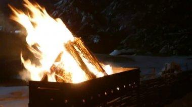 Fuoco nel braciere nella priorità bassa della foresta di inverno siberiano di notte — Video Stock
