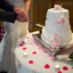 Cutting wedding cake. Detail — Stock Photo #54160501