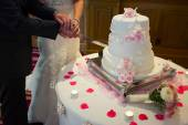Cutting wedding cake. Detail — Stock Photo