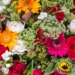Abstract background of flowers — Stock Photo #53015227