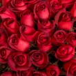 Roses background. — Stock Photo #53498979
