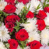 Roses background. — Stock Photo