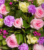 Abstract background of flowers. Close-up. — Stock Photo