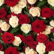 Seamless roses background — Stock Photo #64016763