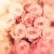 Abstract background of flowers. Close-up. — Stock Photo #67957855