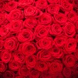 Red natural roses background — Stock Photo #68901005
