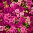 Abstract background of flowers. Close-up — Stock Photo #68901053