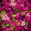 Abstract background of flowers — Stock Photo #70243831