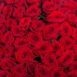 Red roses background - natural texture of love — Stock Photo #73540177