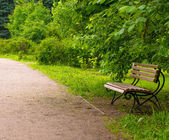 Wooden bench at a park — Stock Photo