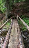 Ponte de madeira — Foto Stock