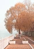 Autumn season on river Kuban — Stock Photo