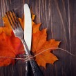 Autumn table setting — Stock Photo #52724865