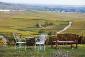 Cosy place to look to the wineyard — Foto Stock
