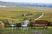 Cosy place to look to the wineyard — Stockfoto