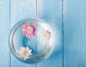 Three cuted flowers floating in a glass vase — Stock Photo