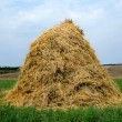 Haystack hay straw — Stock Photo #57583603