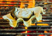 Barbecue Grill seashell meat — Stock Photo