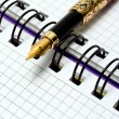Fountain Pen on notebook — Stock Photo #74155159