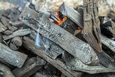 Кемпинг барбекю у костра — Стоковое фото