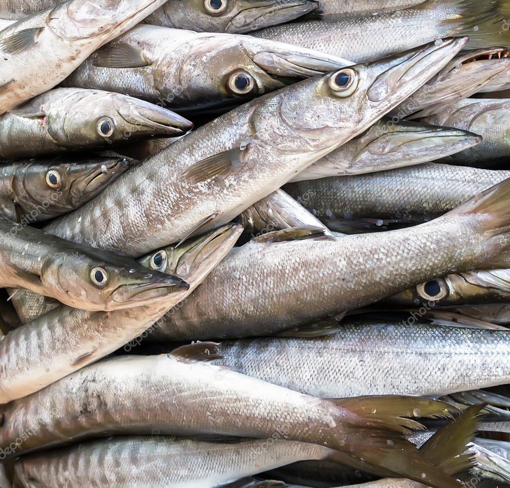 新鲜的银色鱼海鲜市场特写背景– 图库图片