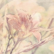 Art floral vintage sepia watercolor background with light coral — Stock Photo #53765377
