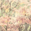 Art floral vintage sepia watercolor background with light coral — Stock Photo #53768567
