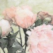 Art floral vintage background with pink peonies in pastels color — Stock Photo