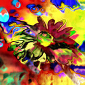 Art floral vintage blurred background with rainbow aster — Stock Photo
