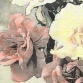 Art floral vintage sepia watercolor background — Stock Photo