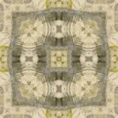 Art nouveau ornamental vintage  pattern, S.9, monochrome waterco — Stock Photo