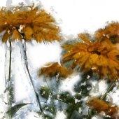 Aislados en fondo blanco de acuarela de flores vintage arte grunge — Foto de Stock