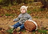 Toddler boy in fall  — Foto Stock
