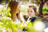 In blossom garden — Stock Photo