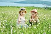 Friends in field — Stock Photo